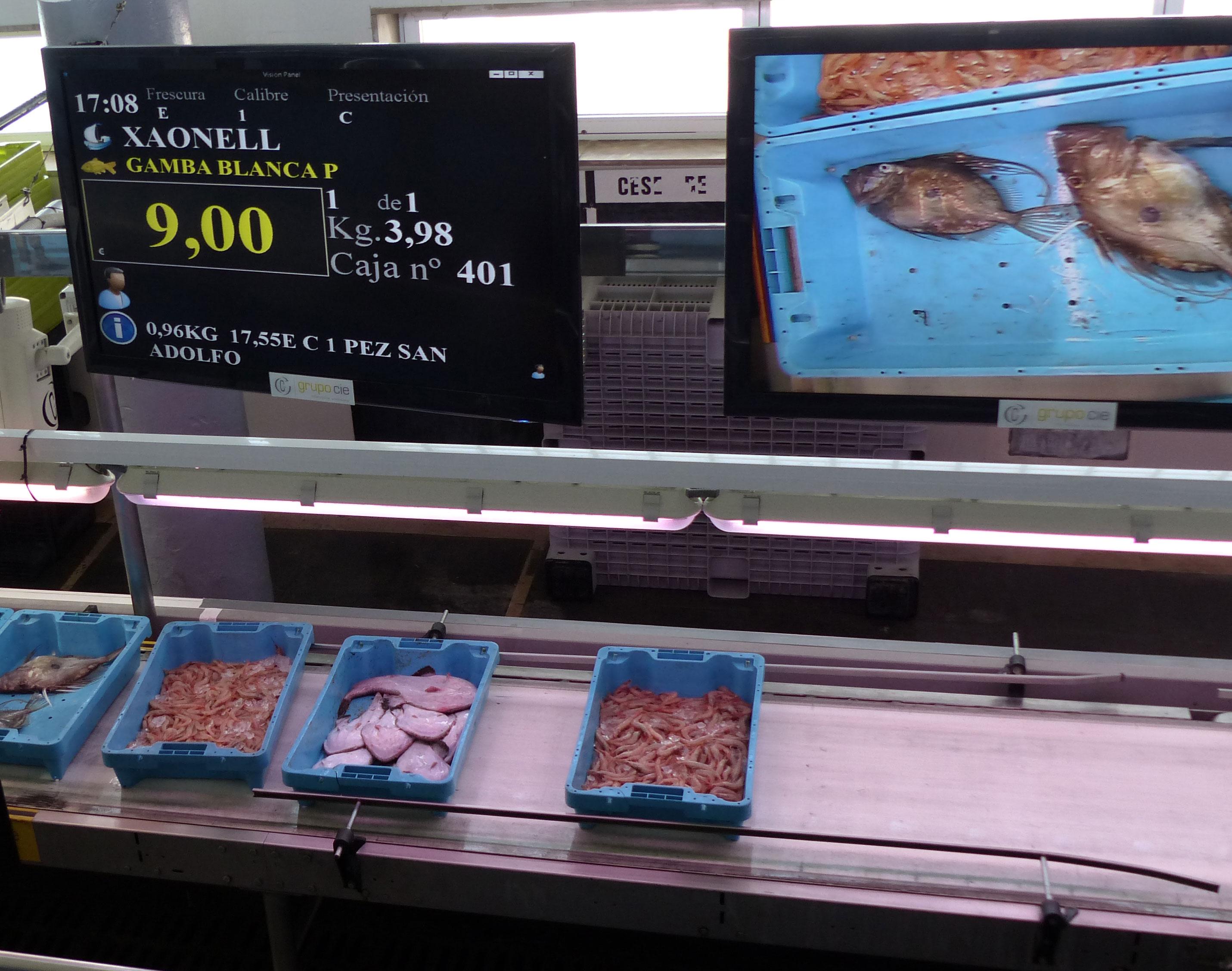 Venta pescado en la lonja
